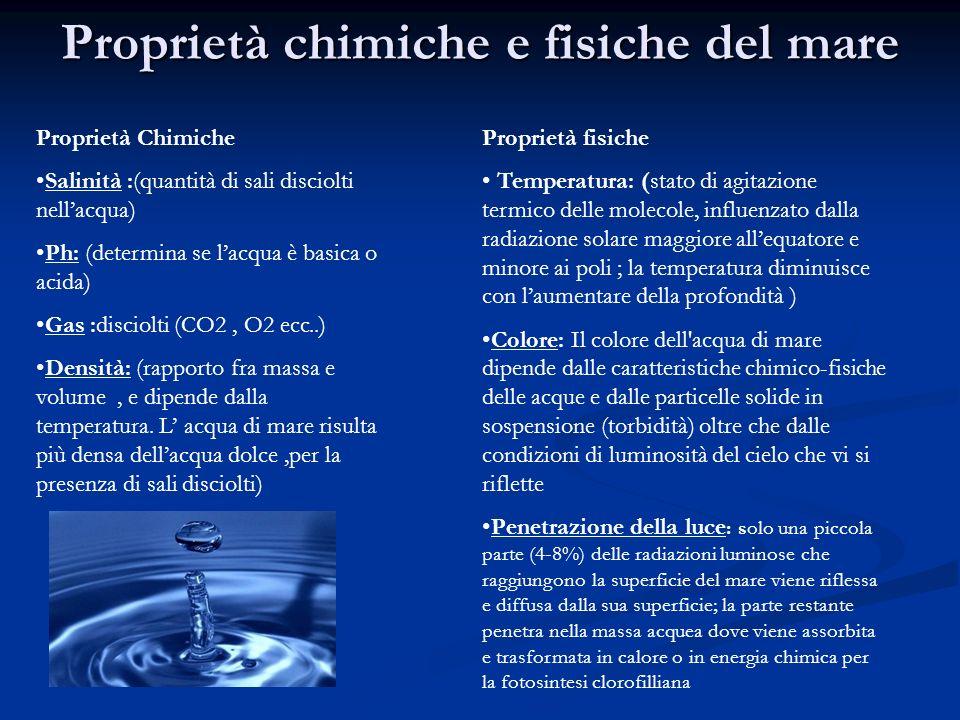 Proprietà chimiche e fisiche del mare