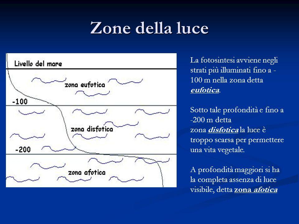 Zone della luce