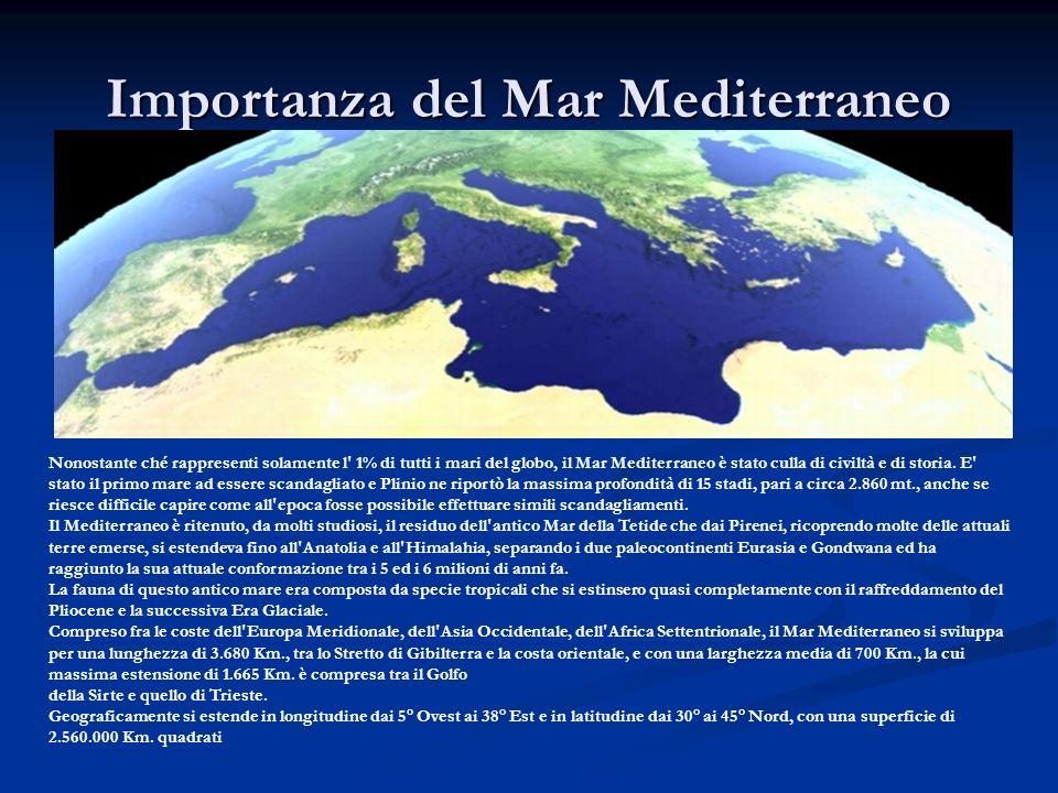 Importanza del Mar Mediterraneo