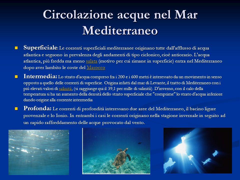 Circolazione acque nel Mar Mediterraneo