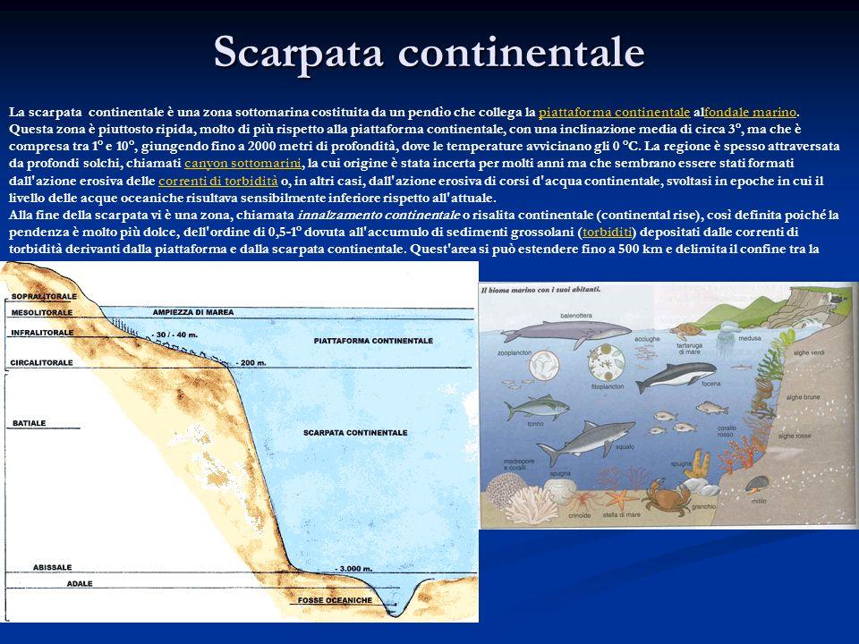 Scarpata continentale