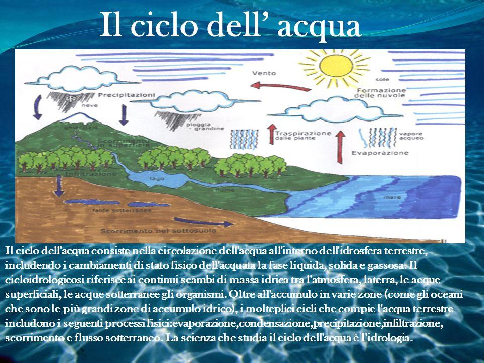 Il ciclo dell' acqua