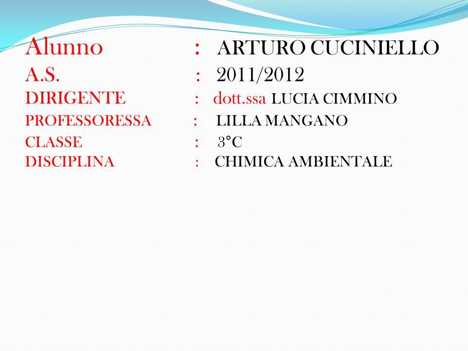 Alunno : ARTURO CUCINIELLO