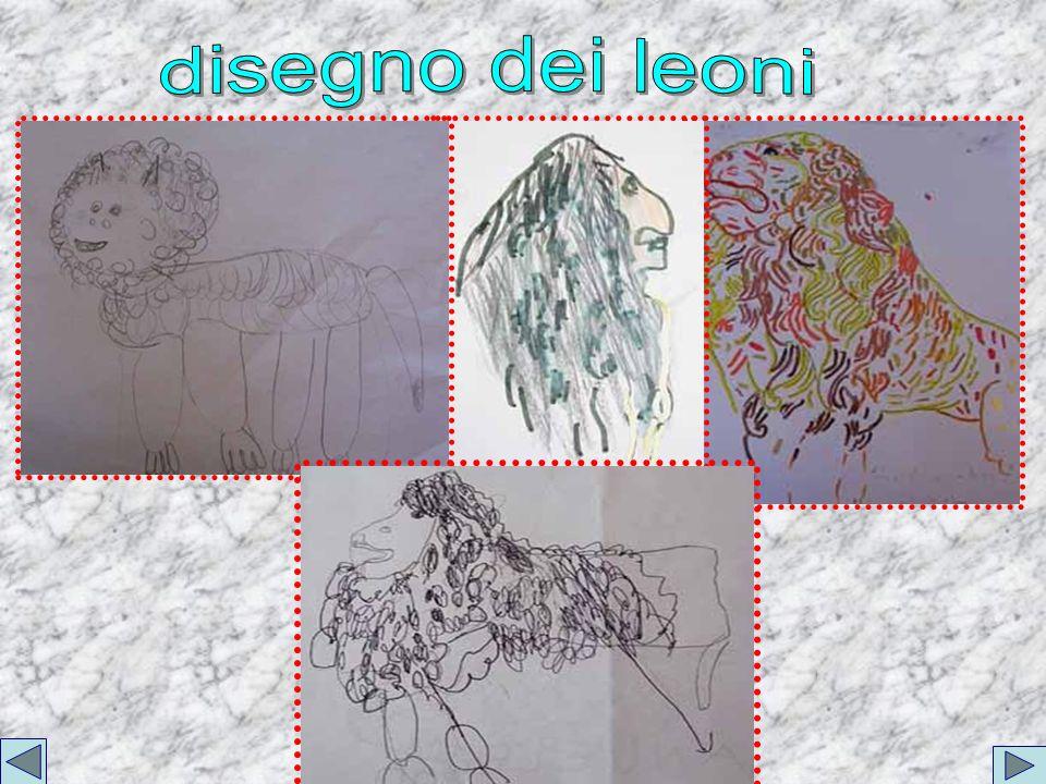 disegno dei leoni