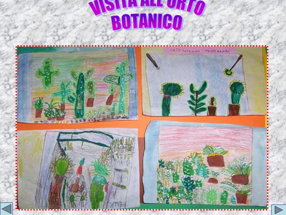 VISITA ALL ORTO BOTANICO