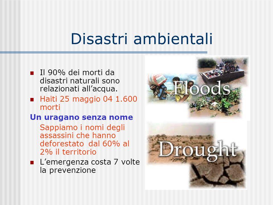 Disastri ambientali Il 90% dei morti da disastri naturali sono relazionati all'acqua. Haiti 25 maggio 04 1.600 morti.