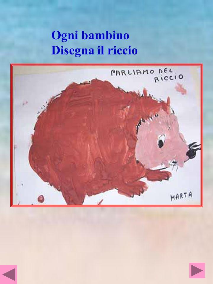 Ogni bambino Disegna il riccio