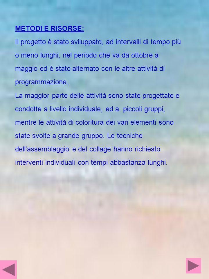 METODI E RISORSE: