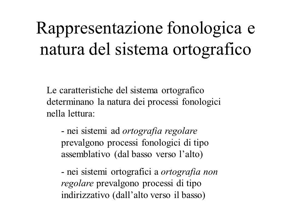 Rappresentazione fonologica e natura del sistema ortografico