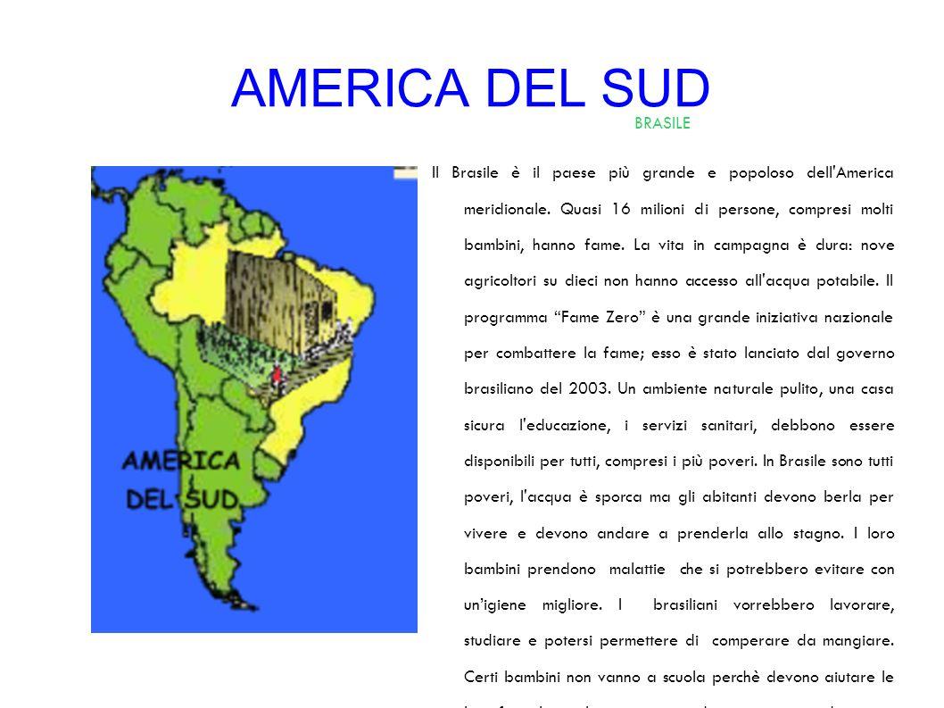 AMERICA DEL SUD BRASILE
