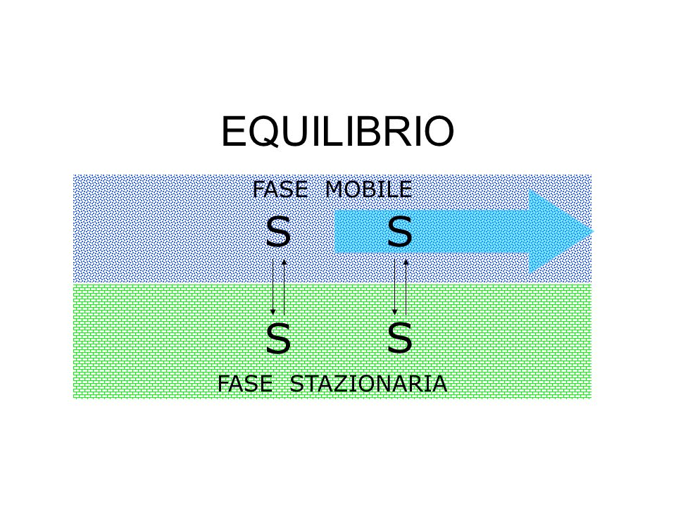 EQUILIBRIO FASE MOBILE S S FASE STAZIONARIA S S