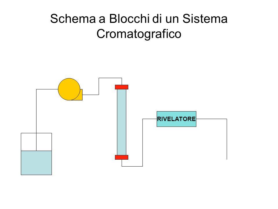 Schema a Blocchi di un Sistema Cromatografico