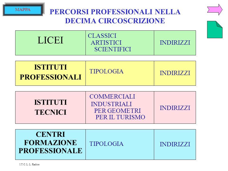 LICEI PERCORSI PROFESSIONALI NELLA DECIMA CIRCOSCRIZIONE