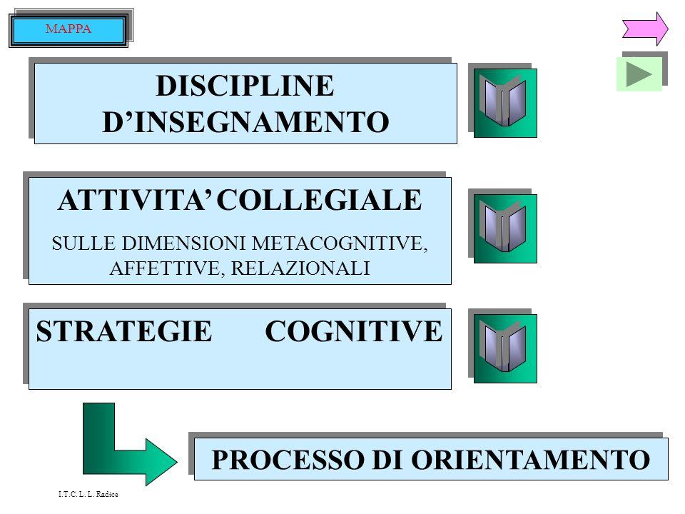 DISCIPLINE D'INSEGNAMENTO PROCESSO DI ORIENTAMENTO