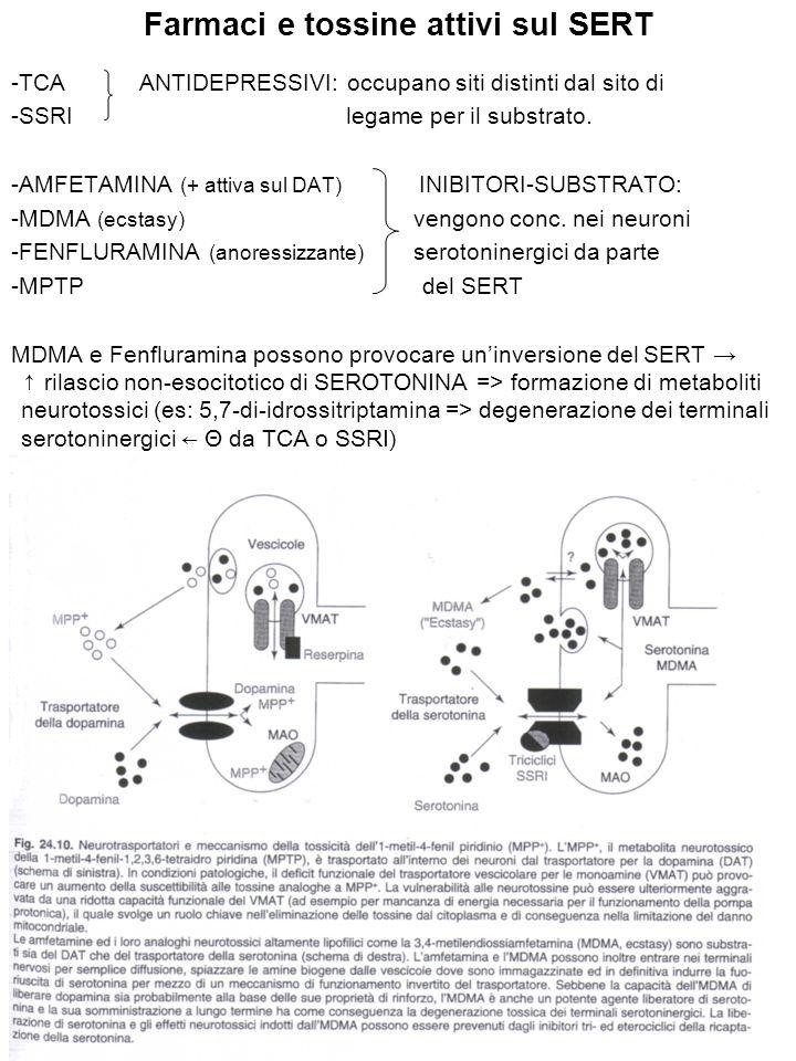 Farmaci e tossine attivi sul SERT