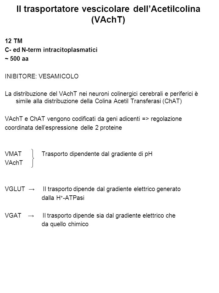 Il trasportatore vescicolare dell'Acetilcolina (VAchT)