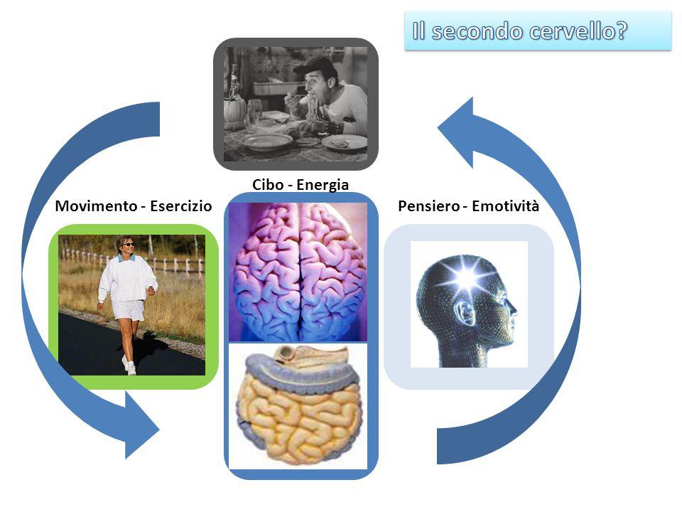 Il secondo cervello Pensiero - Emotività Movimento - Esercizio