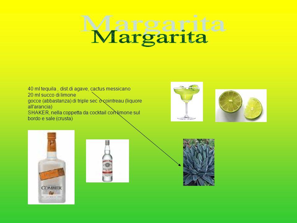 Margarita 40 ml tequila , dist.di agave, cactus messicano