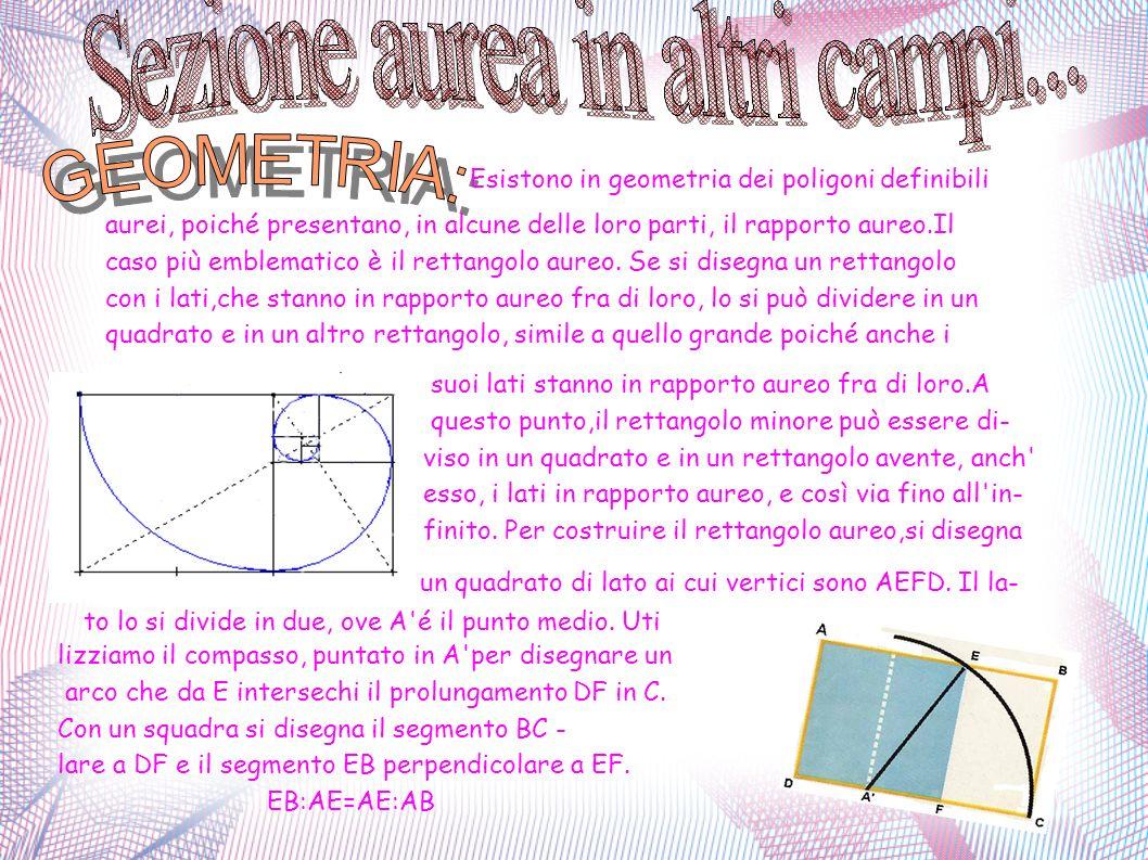 . GEOMETRIA: Esistono in geometria dei poligoni definibili