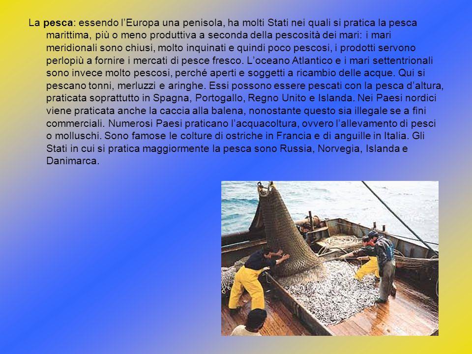 La pesca: essendo l'Europa una penisola, ha molti Stati nei quali si pratica la pesca marittima, più o meno produttiva a seconda della pescosità dei mari: i mari meridionali sono chiusi, molto inquinati e quindi poco pescosi, i prodotti servono perlopiù a fornire i mercati di pesce fresco.