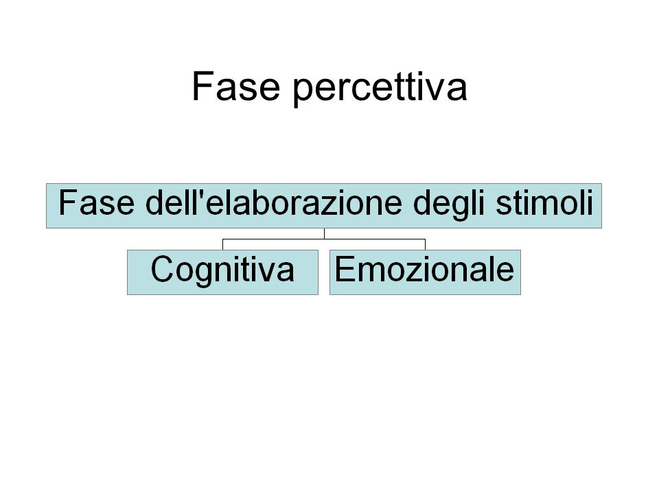 Fase percettiva