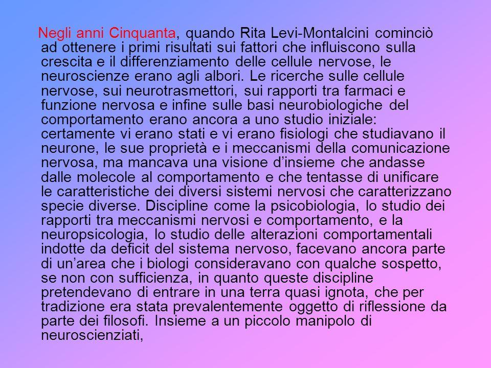 Negli anni Cinquanta, quando Rita Levi-Montalcini cominciò ad ottenere i primi risultati sui fattori che influiscono sulla crescita e il differenziamento delle cellule nervose, le neuroscienze erano agli albori.