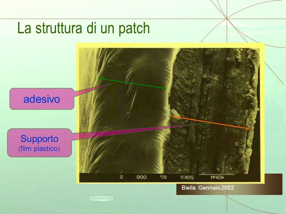 La struttura di un patch