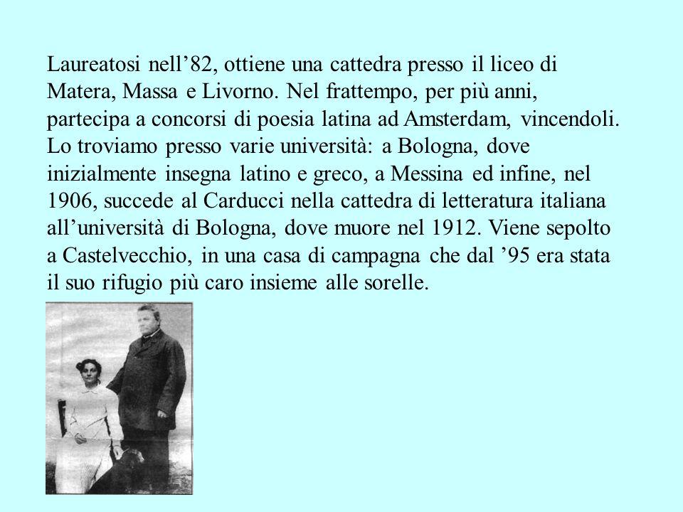 Laureatosi nell'82, ottiene una cattedra presso il liceo di Matera, Massa e Livorno.