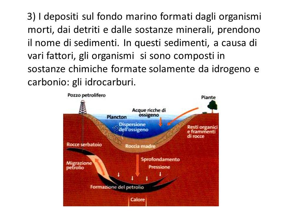 3) I depositi sul fondo marino formati dagli organismi morti, dai detriti e dalle sostanze minerali, prendono il nome di sedimenti.