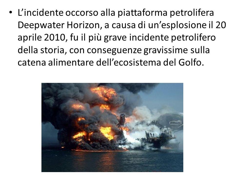 L'incidente occorso alla piattaforma petrolifera Deepwater Horizon, a causa di un'esplosione il 20 aprile 2010, fu il più grave incidente petrolifero della storia, con conseguenze gravissime sulla catena alimentare dell'ecosistema del Golfo.