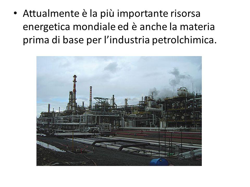 Attualmente è la più importante risorsa energetica mondiale ed è anche la materia prima di base per l'industria petrolchimica.