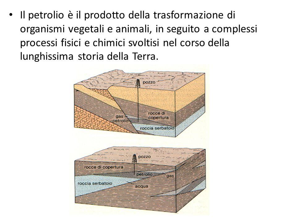 Il petrolio è il prodotto della trasformazione di organismi vegetali e animali, in seguito a complessi processi fisici e chimici svoltisi nel corso della lunghissima storia della Terra.