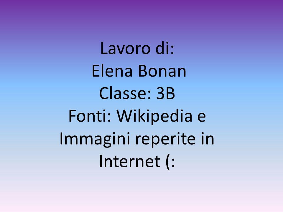 Lavoro di: Elena Bonan Classe: 3B Fonti: Wikipedia e Immagini reperite in Internet (: