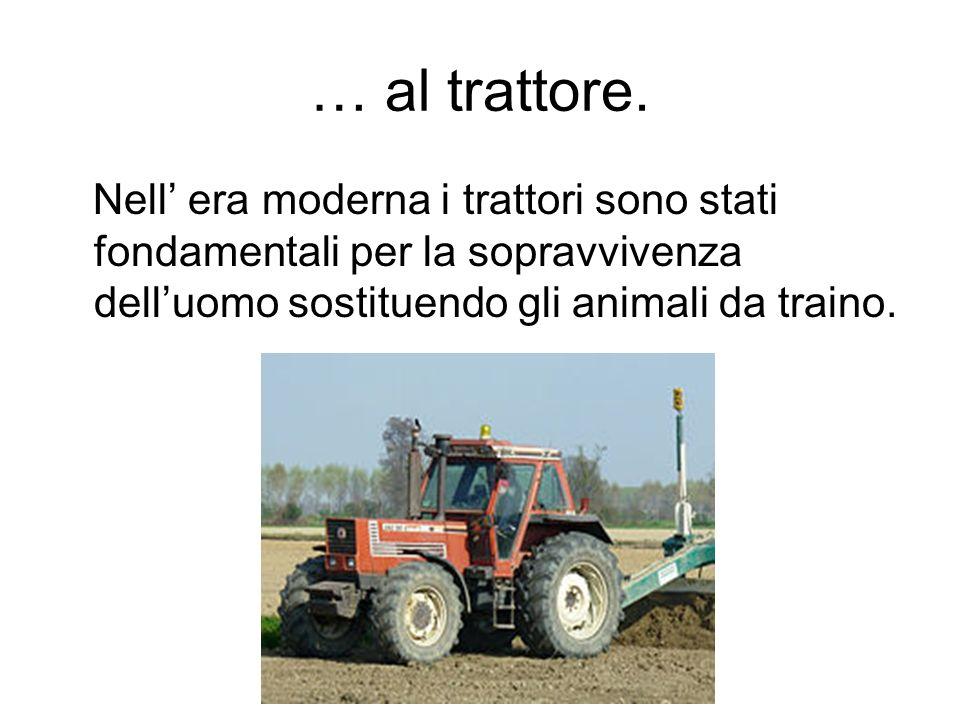 … al trattore.Nell' era moderna i trattori sono stati fondamentali per la sopravvivenza dell'uomo sostituendo gli animali da traino.