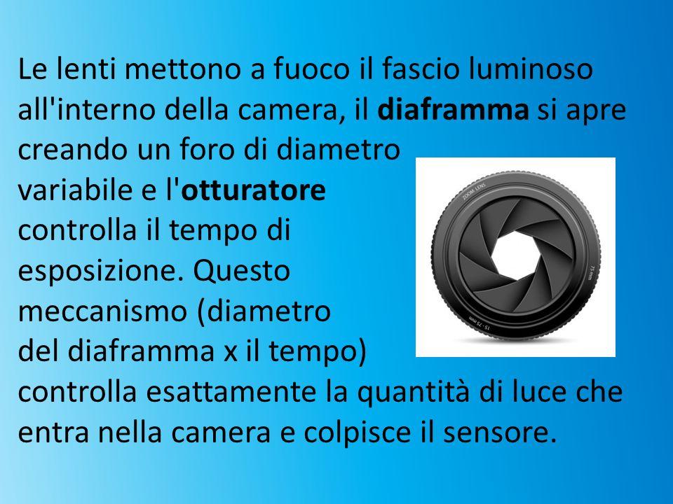 Le lenti mettono a fuoco il fascio luminoso all interno della camera, il diaframma si apre creando un foro di diametro