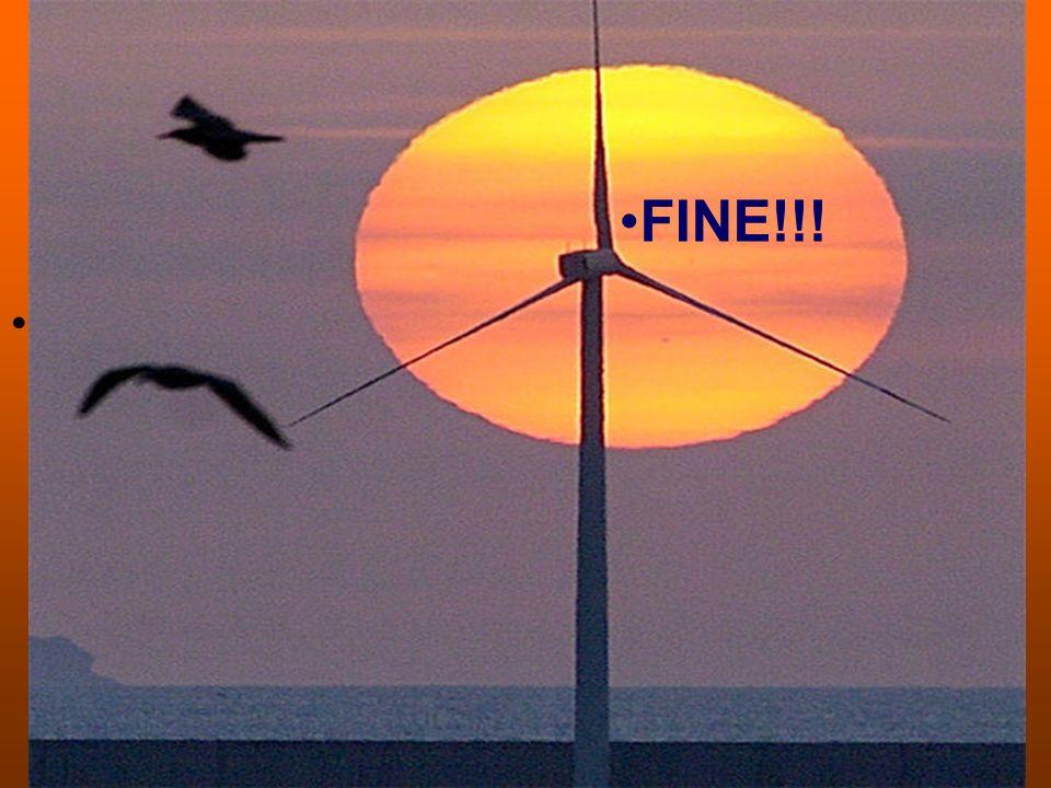 FINE!!! FINE!!!