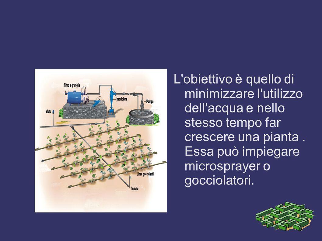 L obiettivo è quello di minimizzare l utilizzo dell acqua e nello stesso tempo far crescere una pianta .