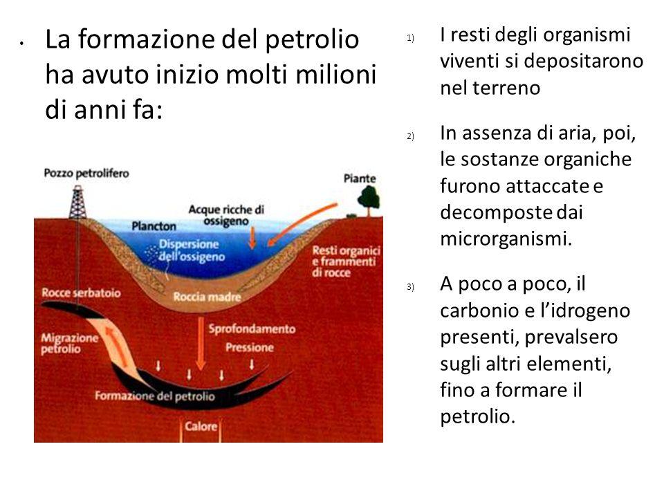 La formazione del petrolio ha avuto inizio molti milioni di anni fa: