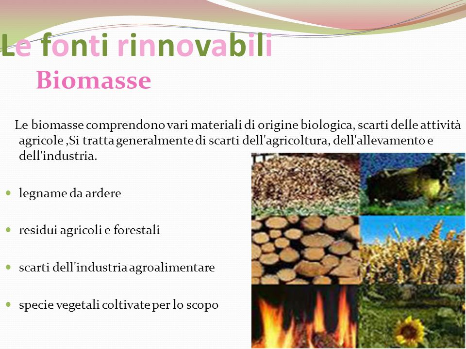 Le fonti rinnovabili Biomasse