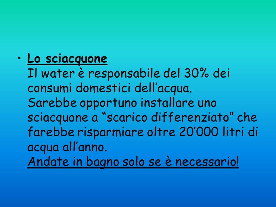 Lo sciacquone Il water è responsabile del 30% dei consumi domestici dell'acqua.