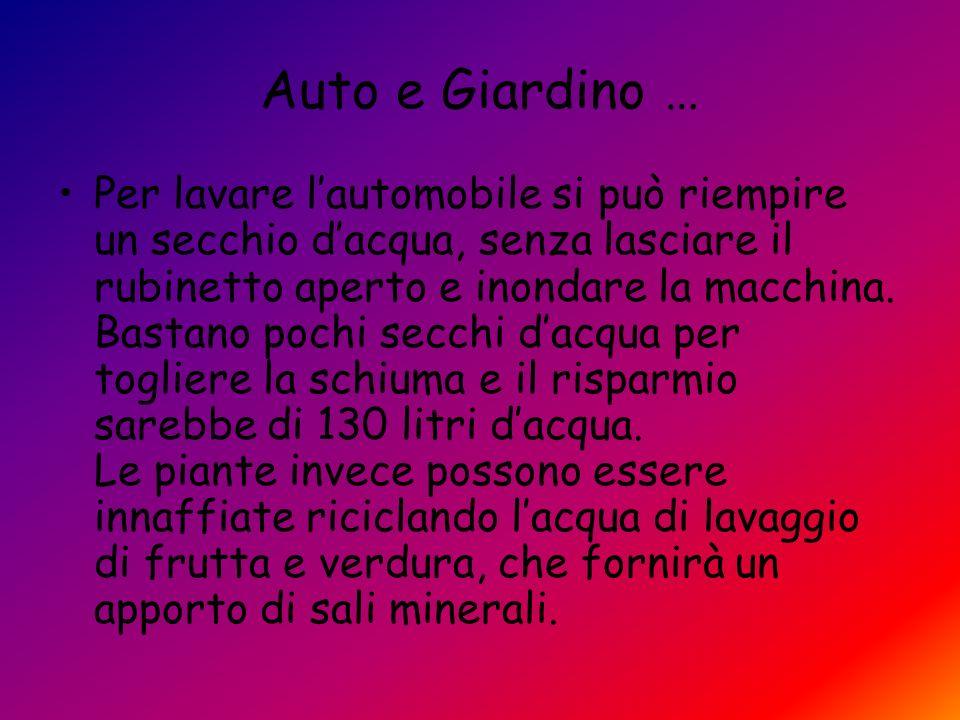 Auto e Giardino …