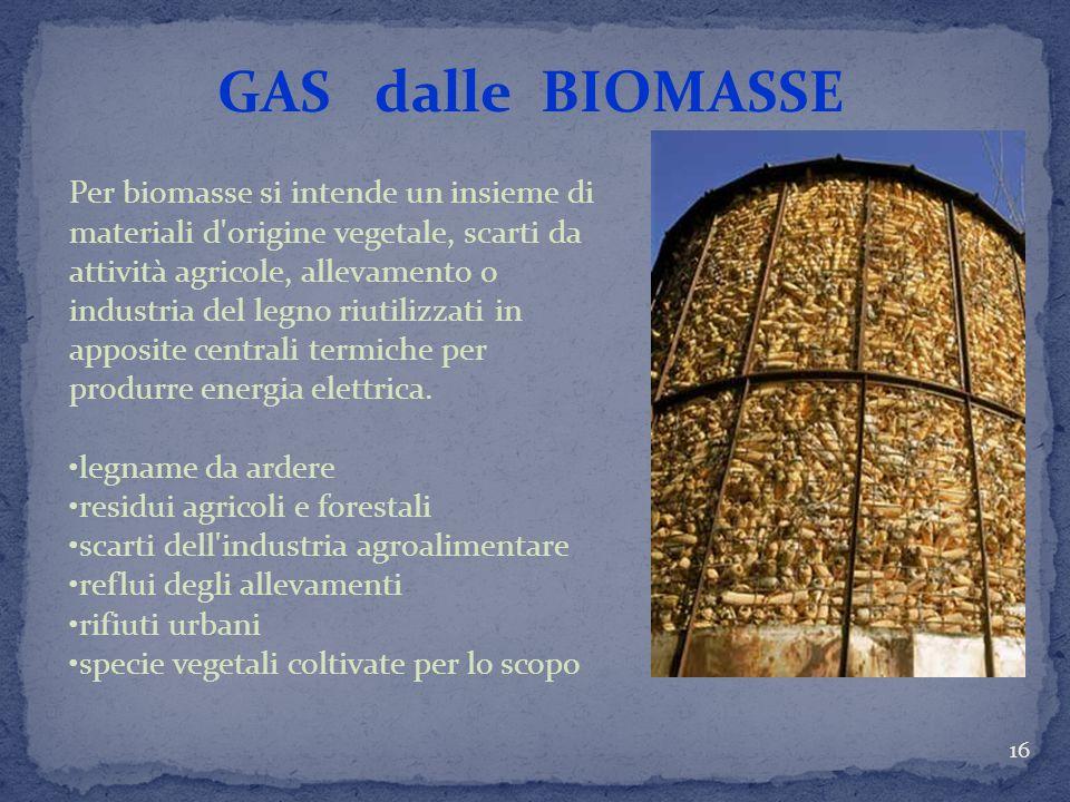 GAS dalle BIOMASSE