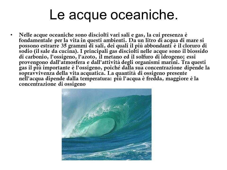 Le acque oceaniche.
