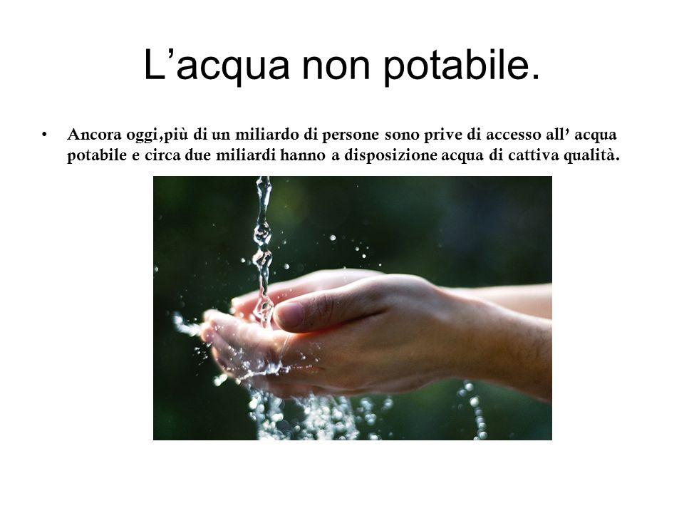 L'acqua non potabile.