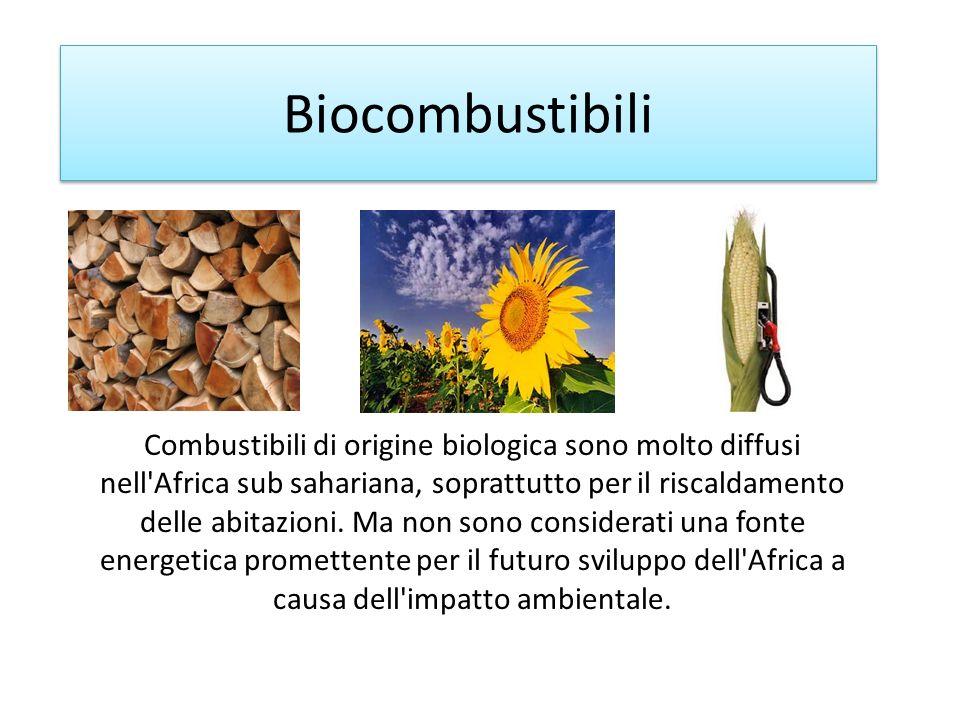 Biocombustibili