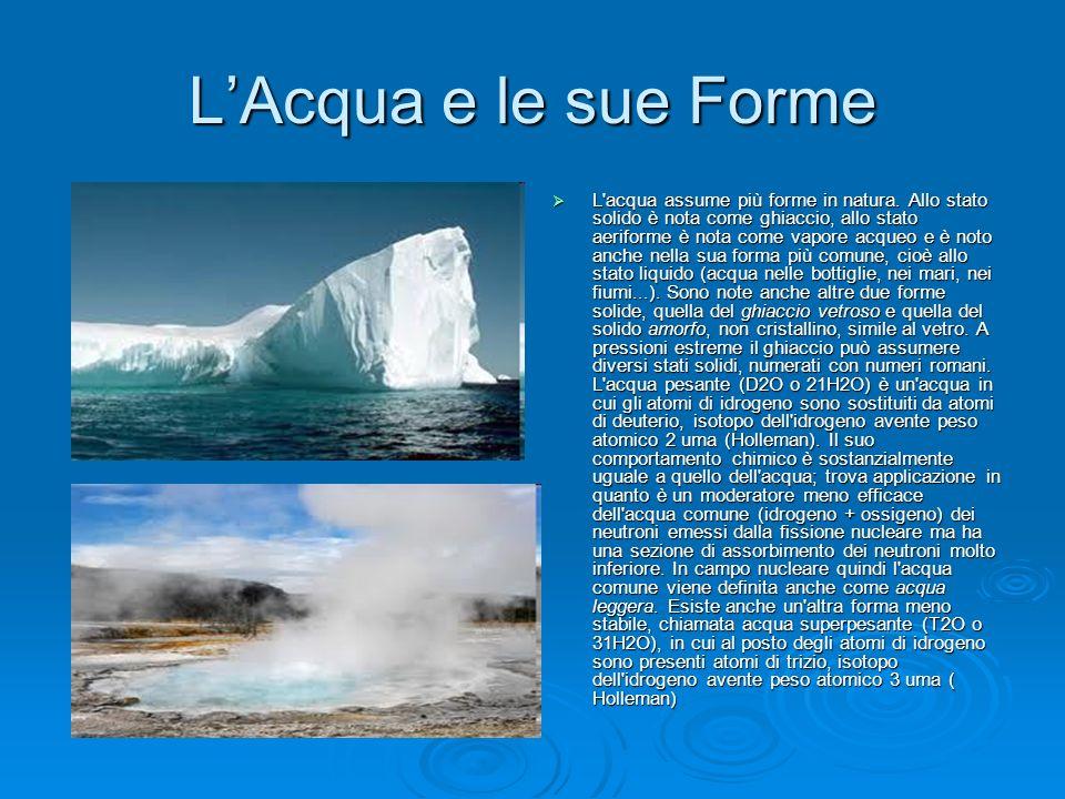 L'Acqua e le sue Forme