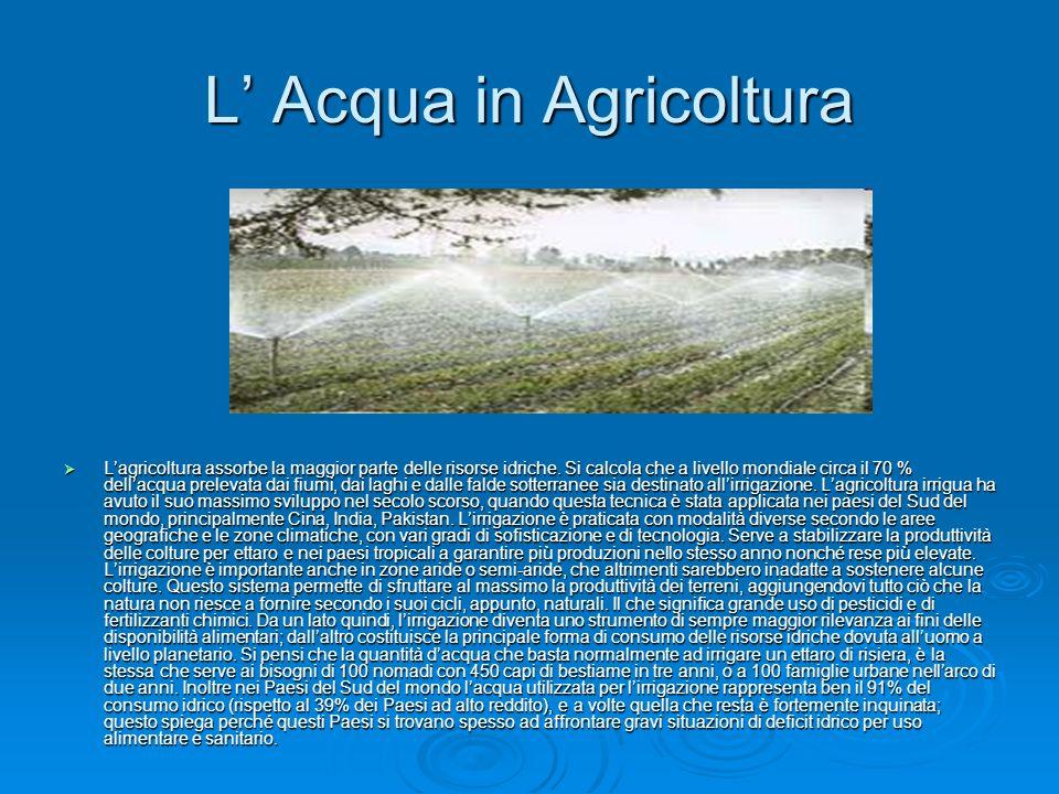 L' Acqua in Agricoltura