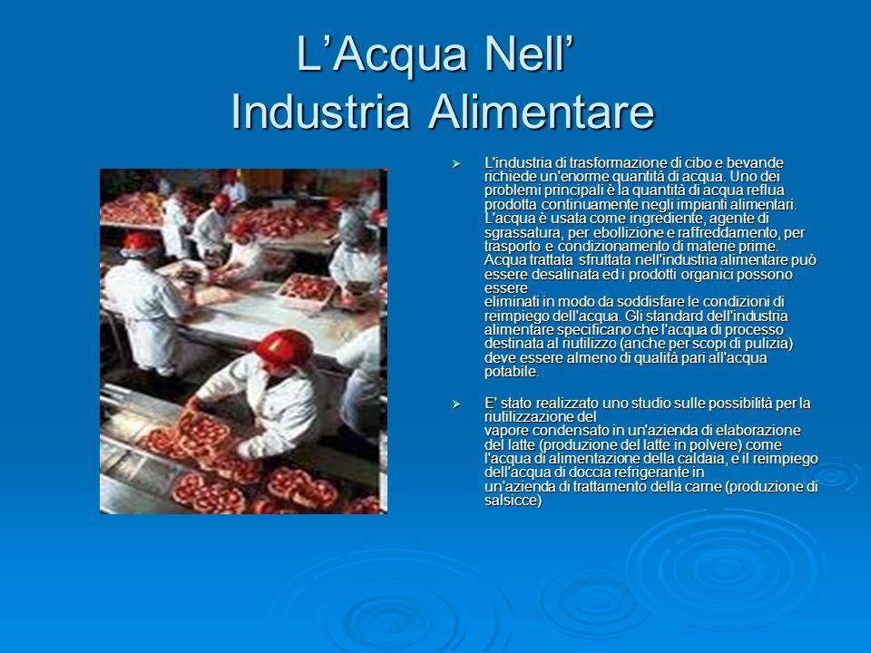 L'Acqua Nell' Industria Alimentare