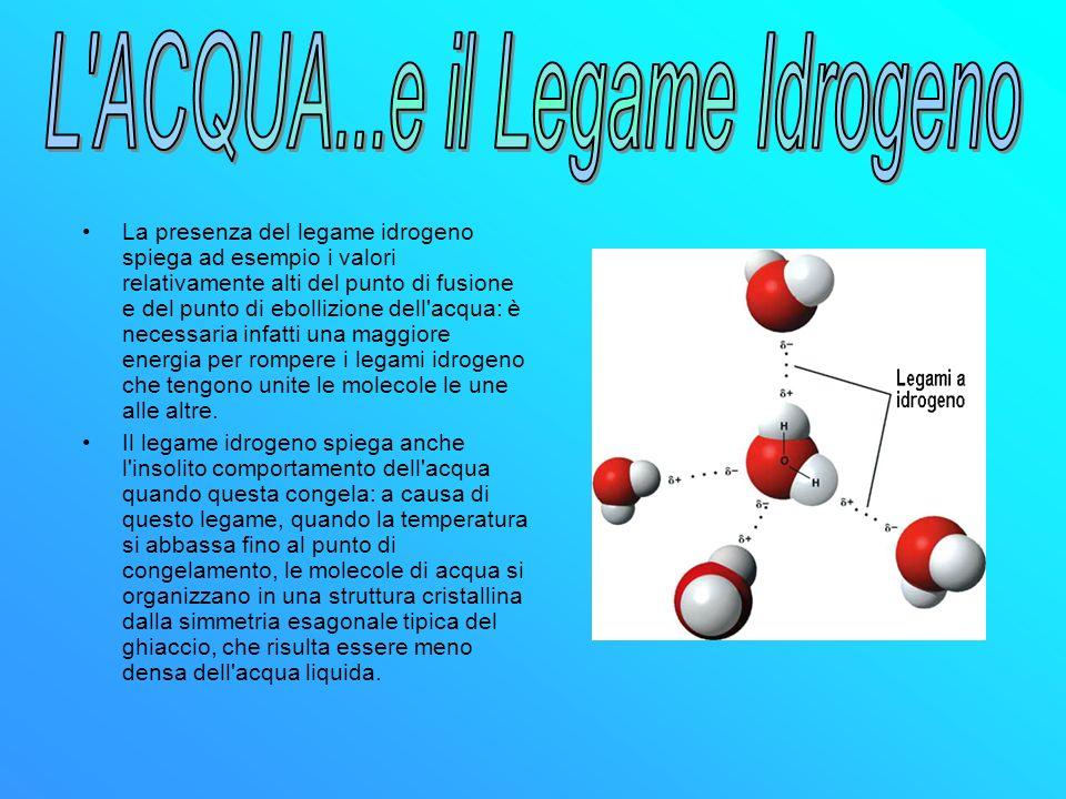 L ACQUA...e il Legame Idrogeno