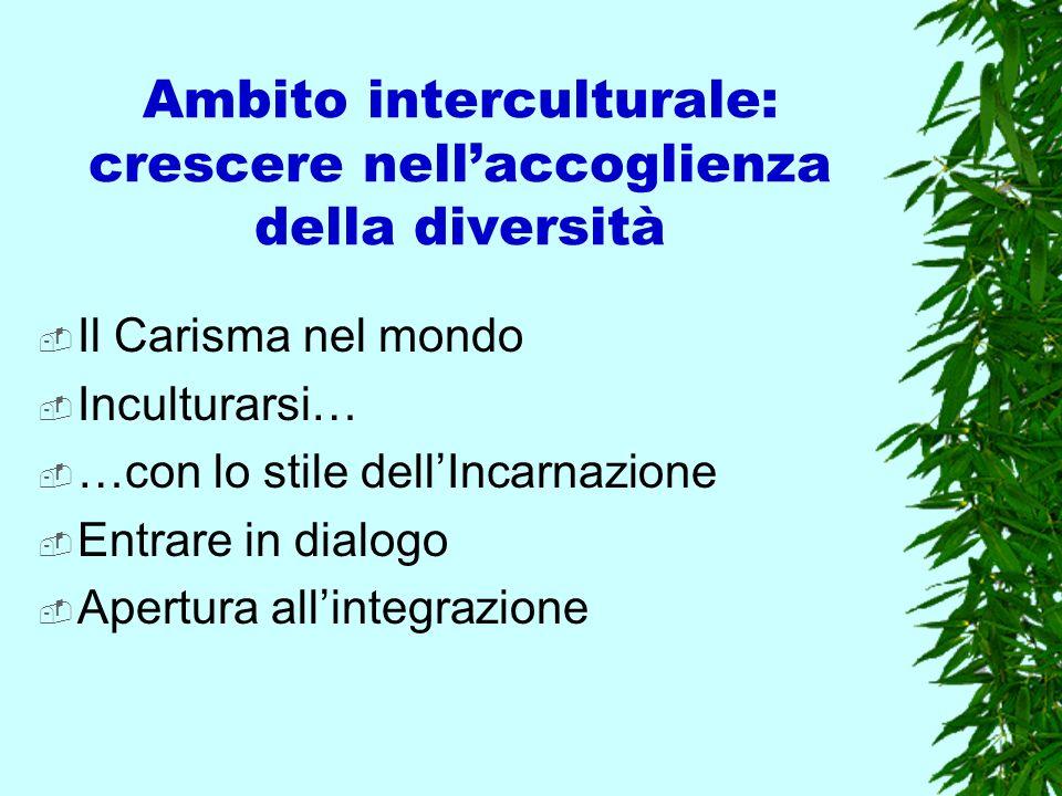Ambito interculturale: crescere nell'accoglienza della diversità